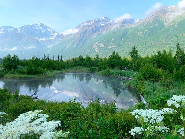 Kingsbridge Travel Alaska Escorted Tours